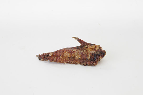 Flügelspitze vom Strauß - Hundeknochen kaufen