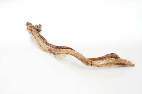 Schlund (Strosse) vom Strauß - Hundeknochen kaufen