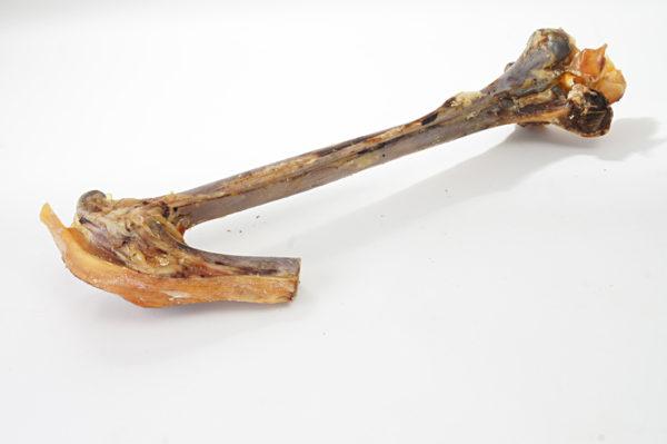 Unterschenkelknochen vom Strauß - Hundeknochen kaufen